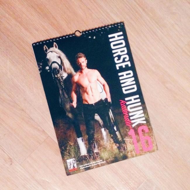 Sinterklaas is me niet vergeten dit jaar ✨ #horseandhunk #horseandhunk2016