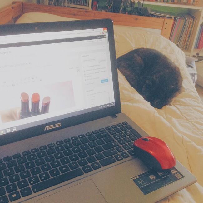 Doing what I love: blogging.