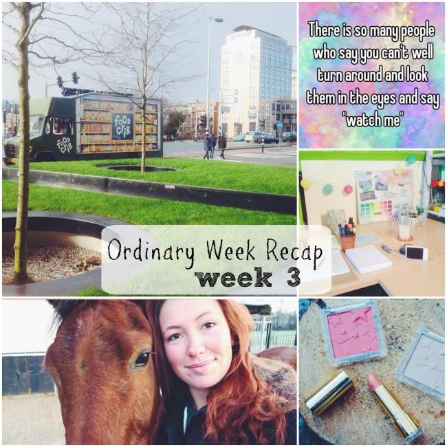 Ordinary Week Recap - week 3