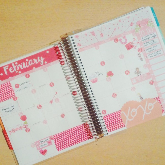 Hello february ❤️ #ordinaryplanning #youtuber #planwithme #erincondren