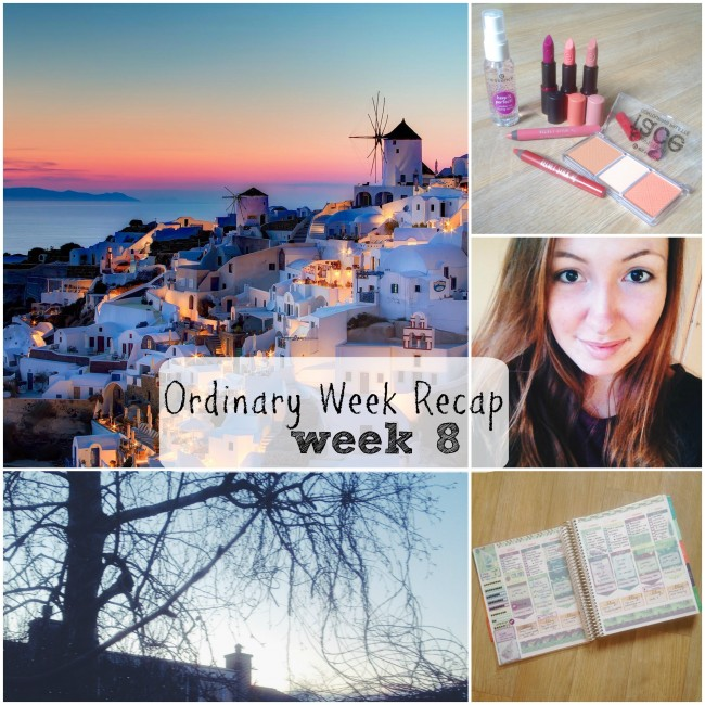 Ordinary Week Recap - week 8