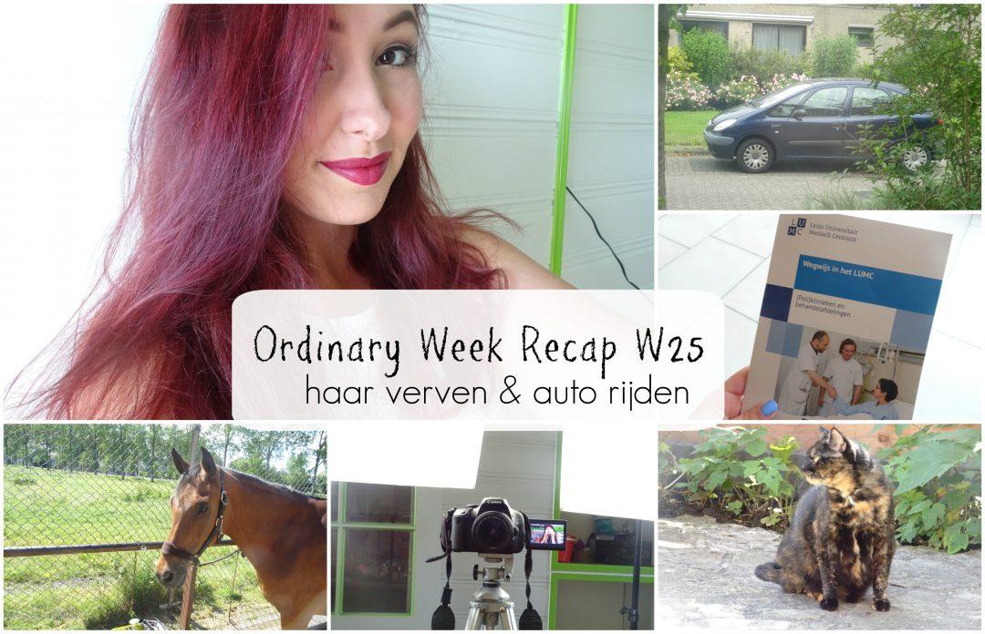 Ordinary Week Recap - week 25